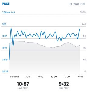 My My Run Screenshot showing Elevation against time