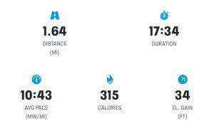 Week 4 Run 1 Results