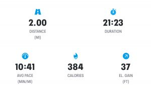 Week 6 - Run 1 Results Screenshot