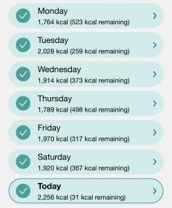 Week 6 Calorie In-take Screenshot